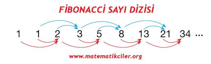 http://www.matematikciler.com/images/8/Sayi-oruntuleri-fibonacci-sayi-dizisi.jpg